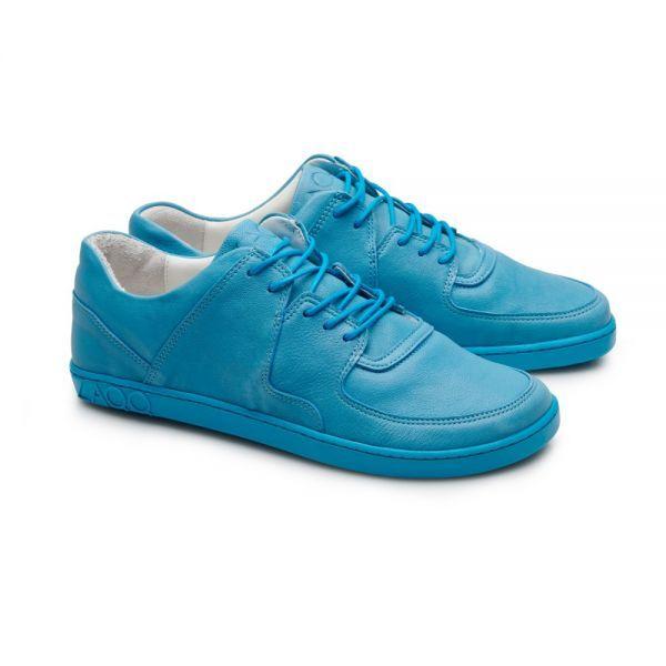 IVIQ Blue